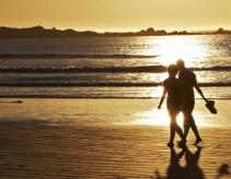 Banner - Abalone beach