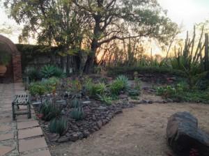 Shangri-La's Zen Garden at sunset