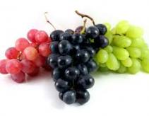 kranskop druiwefees